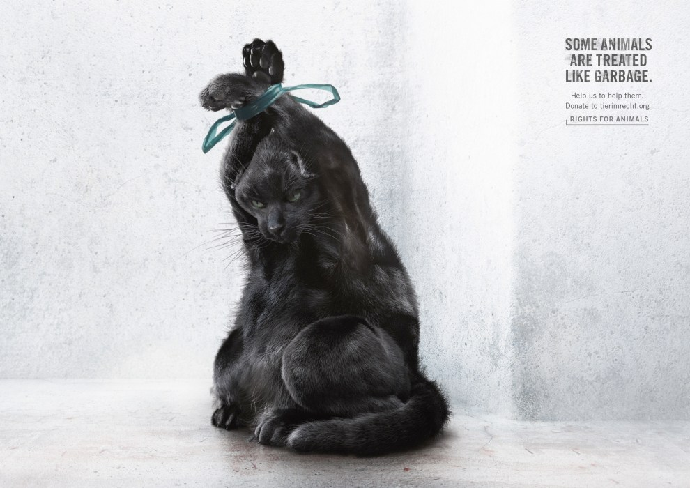 foundation-tier-im-recht-animals-garbage-bags-1