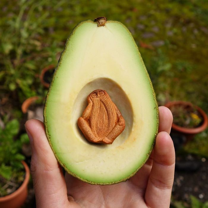 Irish artist crafts intricate sculptures from avocado pits