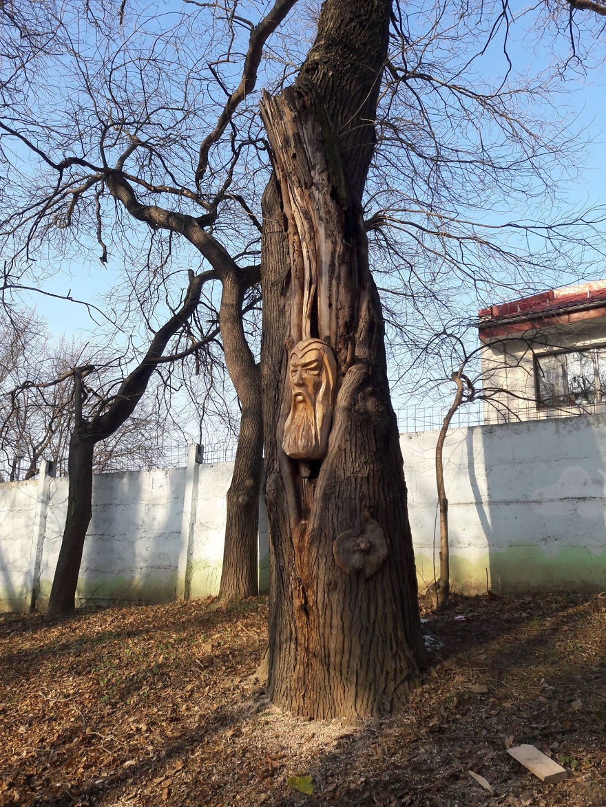 Sculptor uses chainsaw to turn old trees into works of at