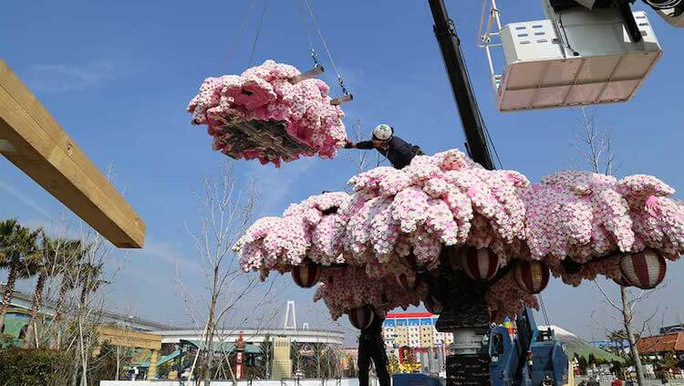 Cherry blossom tree made from over 800,000 LEGO bricks