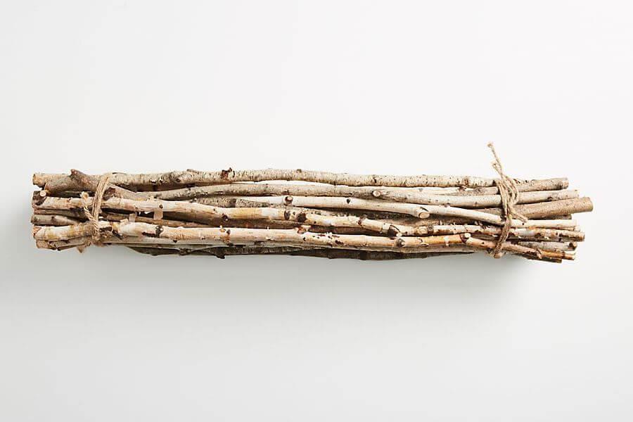 Birch Branch Bundle: Anthropologie twigs
