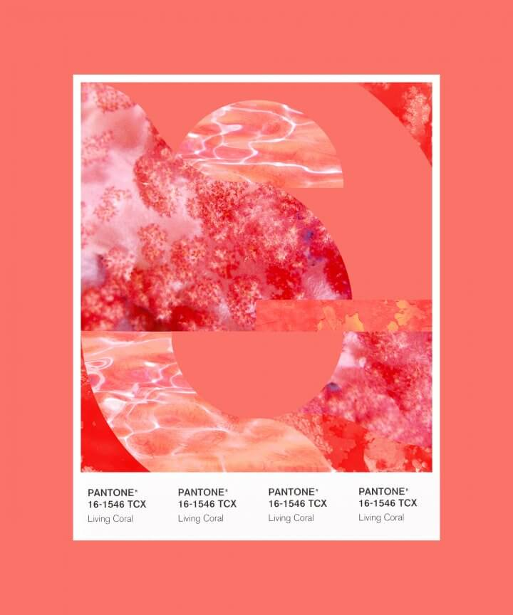 Pantone 2019 Colour Of The Year: Living Coral 16-1546