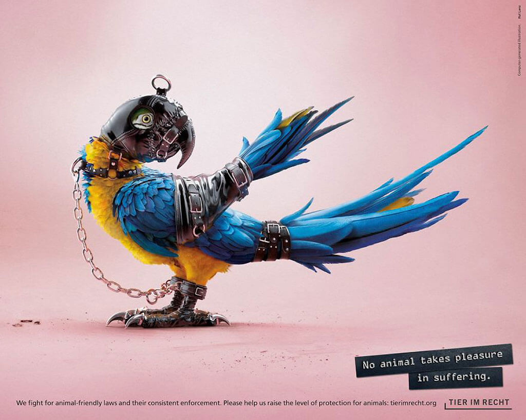 Tier im Recht anti-cruelty campaign: 3D Animals