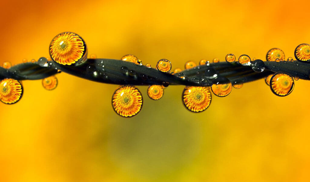 Water droplets by Don Komarechka