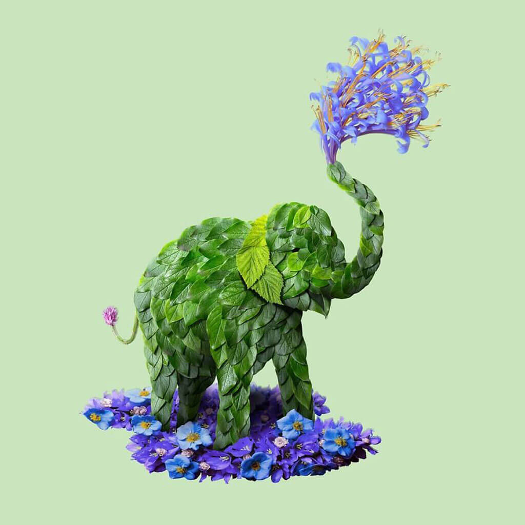 Animal portraits make from flowers