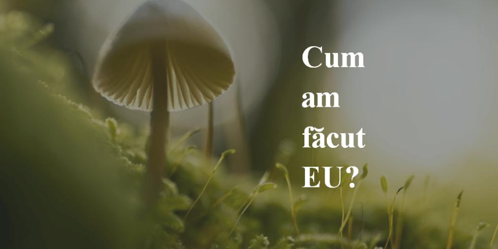 Cum Am Făcut EU?