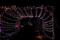 Christmas Lights at Elizabethan Gardens