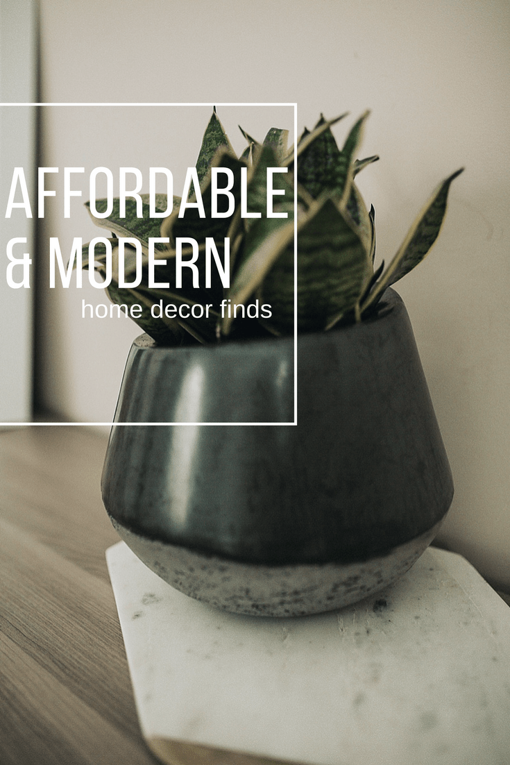 MODERN  BEAUTIFUL AFFORDABLE HOME DECOR MUST HAVES  Dani Marie Blog