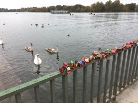 30/10 - The Maschsee.