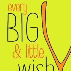 Snap Review: Every Big & Little Wish by E.C. Moore