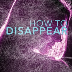 An #interview with Ann Redisch Stampler, author of HOW TO DISAPPEAR