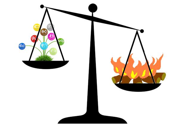 Alimentos nutricionalmente densos