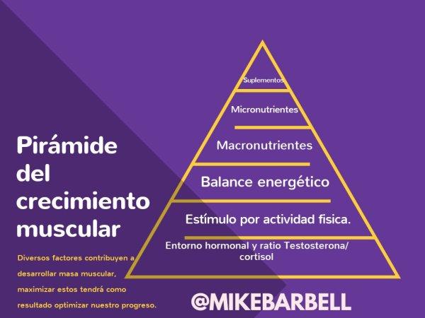Prioridades en el entrenamiento de la hipertrofia muscular