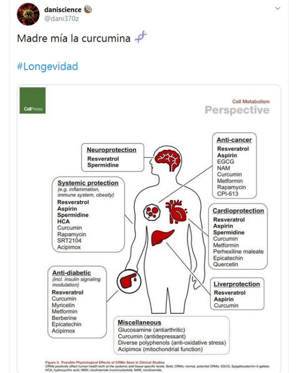 Beneficios de la curcumina para la salud