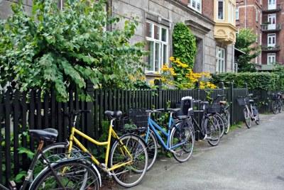 Bikes on Copenhagen