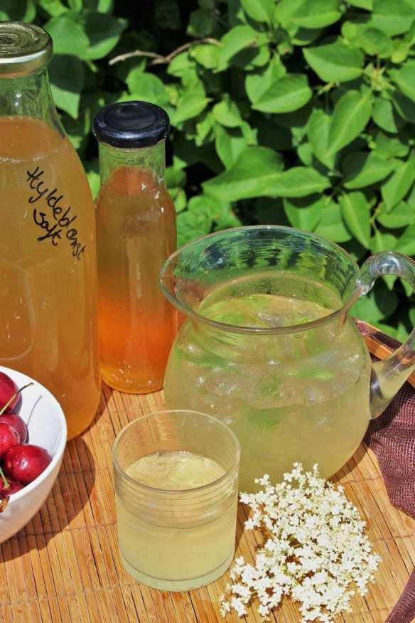 Lav din egen hyldeblomstsaft - med eller uden sukker. Brug den som saftevand, i drinks, lav hyldeblomstsirup eller sorbet, du finder opskrifter og inspiration på danishthings.com