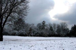 381 שלג, גרמניה