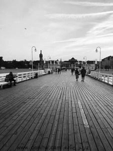 5065 שחור לבן, גשרים, פולין