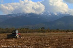 5084 שדות, רומניה