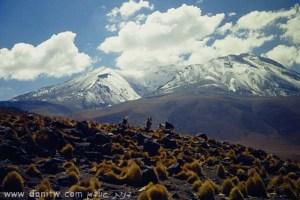 5152 הרים, בוליביה