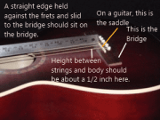 Checking neck angle and Bridge and Saddle identified