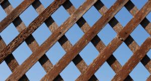lattice500px_1418839_77626821
