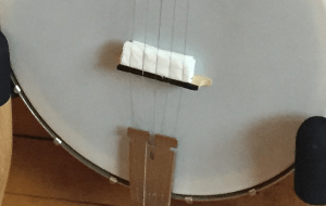 face tissue banjo mute