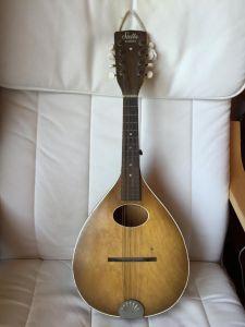 Mandolin Front