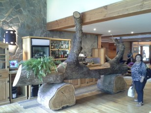 Puella. A substantial and unusual bar made from a tree. It was designed to discourage people from entering on the right side.