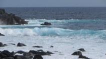 A wild coast