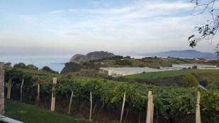 View from San Prudencio hotel Getaria - beautiful wine country