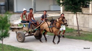 Locals on horse cart, Gili Trawangan