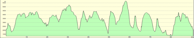 Profile of the course.