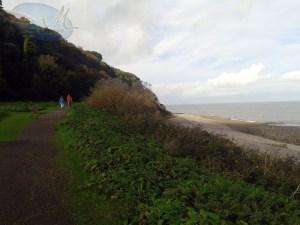 Coastal trail.