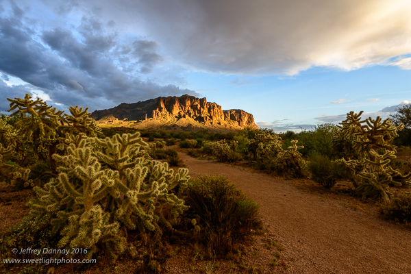 One moment the cactus on the left was well illuminated, then the light shifted onto the mountain.