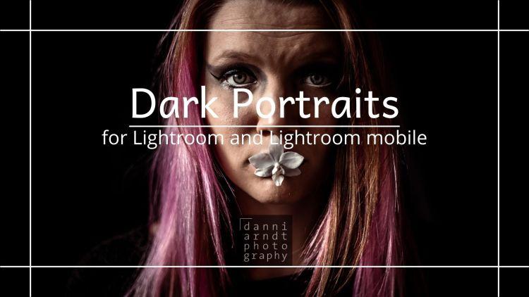 Vorschau Dark Portraits Presets Warm Red