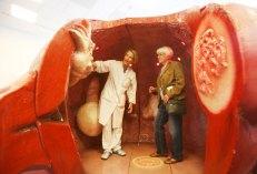 organ-modell-danny-gohlke-fotograf