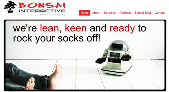 Bonsai Interactive social media and digital marketing agency