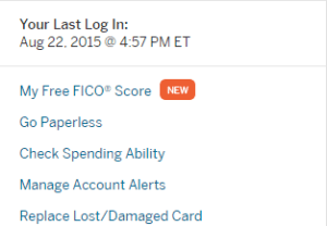 My American Express Account Summary
