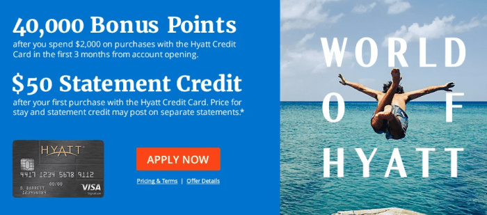 chase hyatt offer 45k plus $50