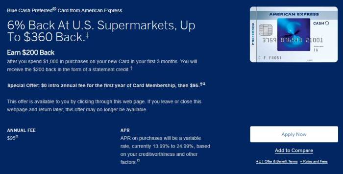 Amex Blue Cash Preferred Bonus
