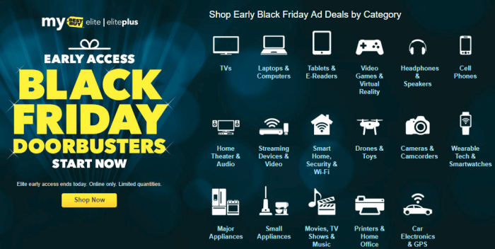 Best Buy Black Friday Early Access