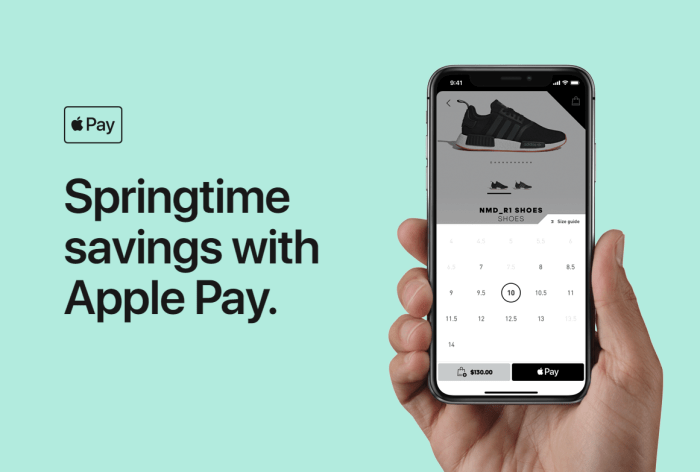 Apple Pay Promo