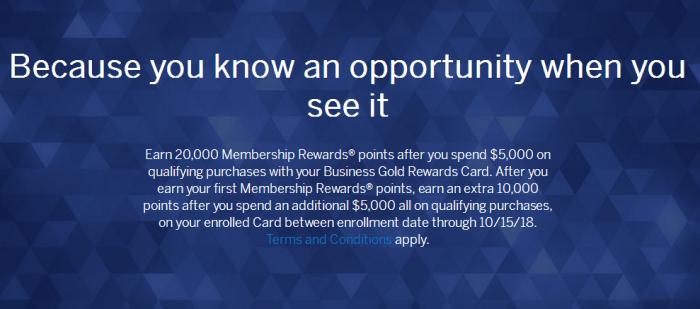 Amex Business Gold Rewards 20K points