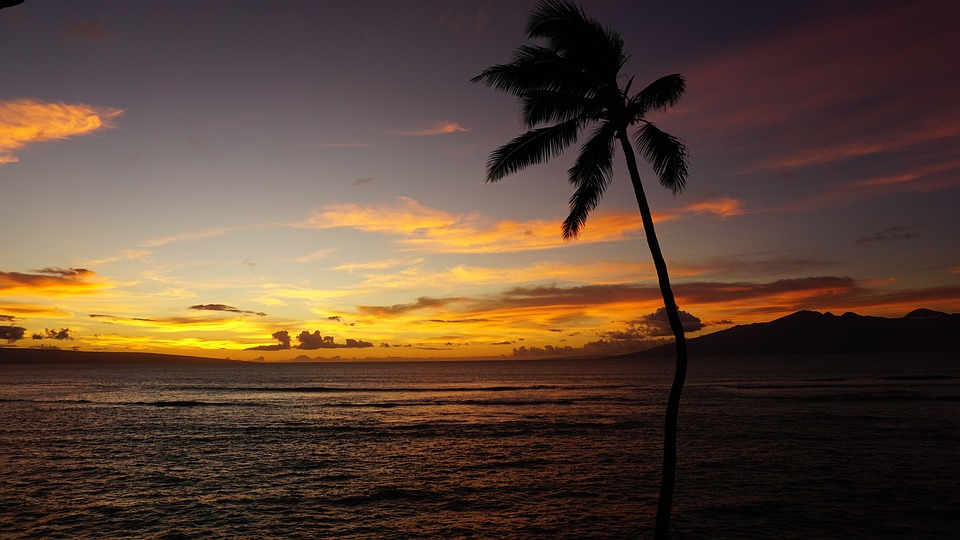 Flights To/From Hawaii from $139 One-Way in Basic Economy