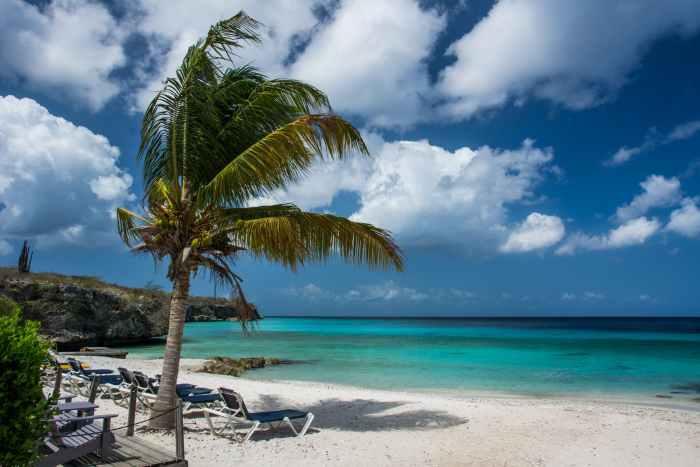 cancel delta flight dominican republic