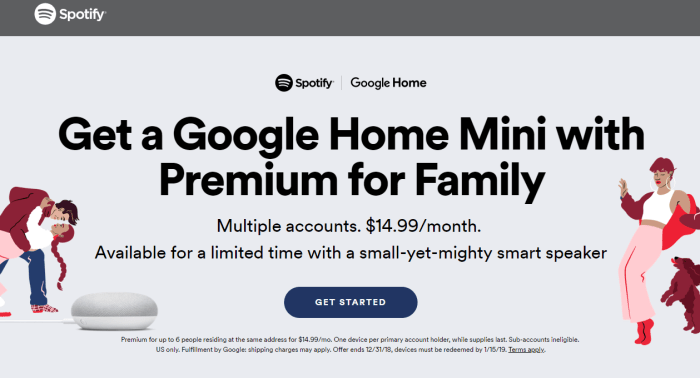 Get a Google Home Mini with Premium for Family