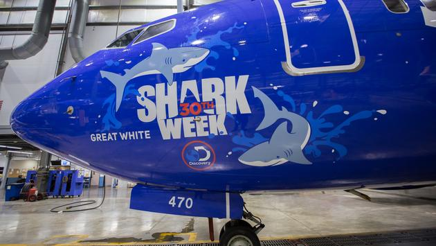southwest shark week
