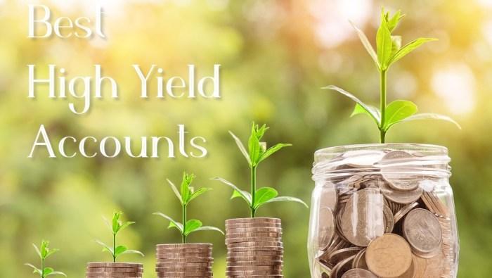 Best High Yield Accounts