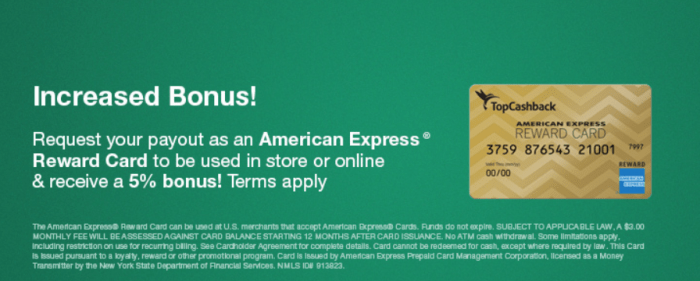 TopCashback, Get 5% Bonus When You Cash Out with a Amex Gift